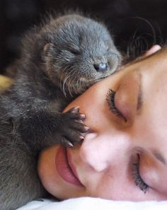 Meanwhile, the world's luckiest face had a visit from a baby otter.