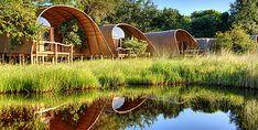 Außenbereich, Camp Okuti, Okavango Delta, Botswana