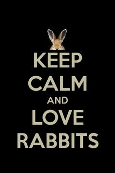 Keep Calm and Love Rabbits