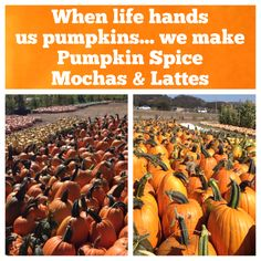 Humo Day Special: PUMPKIN SPICE MOCHA OR LATTE! Get it hot or iced!