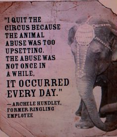 I will never again go to a circus! Animals should not be merely props in a show for our entertainment.