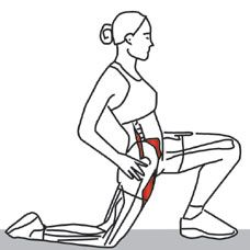 TECHNIQUE  Kneel on one foot and the other knee. If needed, hold on to something to keep your balance. Push your hips forward.   See more at: http://www.triggerpointcentral.com/patient/trunk_and_spine_webv_pt_st_page7.php#sthash.tq6Af4J4.dpuf