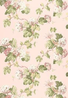 5004370 Viburnum Blush Schumacher Wallpaper you can purchase this pattern online for less plus samples available. Thanks for shopping Mahones Wallpaper Shop for pattern Remember Mahones Wallpaper Shop only sells hand materials straight from Schumacher Blush Wallpaper, Fabric Wallpaper, Wallpaper Roll, Iphone Wallpaper, Chic Wallpaper, Bedroom Wallpaper, Trendy Wallpaper, Vintage Paper, Vintage Flowers