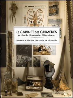 Bienvenue dans mon laboratoire secret. Moi, Camille Renversade j'ai décidé de livrer aux yeux du monde le fruit de mes recherches et expériences...