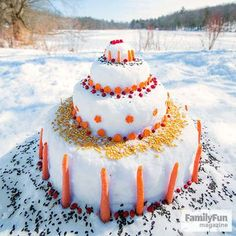 A Feast for Forest Friends: Help local wildlife through the lean winter months with this cool cake made just for them. Sculpt snow as shown, then decorate it with veggies, berries, corn, and seeds. Stop by often to look for tracks. You can use a wildlife guidebook to see who might be munching on the goodies.