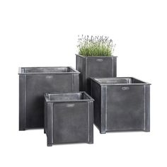The garden designer's planter. British-made, weatherproof, zinc-galvanised steel square planters from Garden Requisites' workshop near Bath, England. Just the thing for Bay topiary, Lavender and strong enough for small trees such as Olives. Square Planters, Metal Planters, Garden Planters, Gravel Garden, Lawn And Garden, Door Canopy Designs, Warehouse Design, British Garden, Backyard Plants