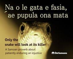 Samoan Proverb about a Humble Snake | One Samoana
