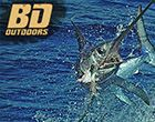 Check out this incredible footage from Capt. Nick Stanczyk of a swordfish checking out a bait in 1600-feet of water.