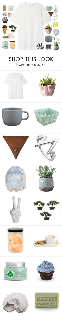 """""""pastel"""" by abbeyso ❤ liked on Polyvore featuring Monki, CB2, Palila, Torre & Tagus, Noir, Nearly Natural, Romance Was Born, Fuji, Urban Trends Collection and Branche d'Olive"""