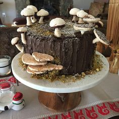 Inspired by Hither and Thither, using Sprinklebakes' recipe. All that's missing is Smurfs. Fancy Desserts, Fancy Cakes, Fairy House Cake, Moss Cake, Mushroom Cake, Cute Birthday Cakes, Caking It Up, My Dessert, Cake Boss