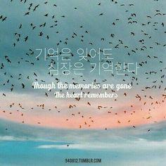 Korean Language 808888783049180038 - Memories ❤ Source by Korean Phrases, Korean Words, How To Speak Korean, Learn Korean, Korea Quotes, K Quotes, Tattoo Quotes, Learn Hangul, Korean Alphabet