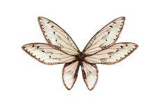 Märta Mattsson Brooch: Wings, 2014 Cicada wings, resin, silver, glitter, cubic zirconia
