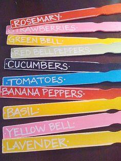 paintstick garden markers