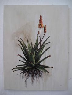 Inky Leaves: Kurt Po and his Aloe Botanical Drawings, Botanical Prints, Photo Images, Art Images, Plant Painting, Floral Wall Art, Plantation, Cactus, African Art