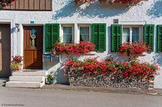 Kirchgasse 4 Haus mit Geranium und Holzbeige Wood Stack Elsau