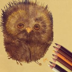 Super ugly bird 💛 (What a pity) Pencil illustration