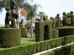 Jardim de Victor Graeff