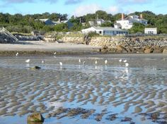 Old Manse Inn: Breakwater Beach Flats In Brewster near Brewster Store nice to walk out at low tide
