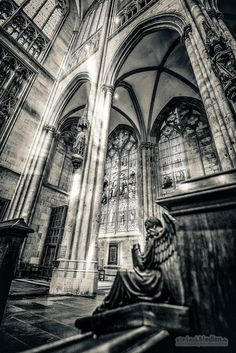 Kölner Dom / #Cologne Cathedral