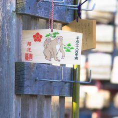 #神社#shrine #絵馬#正月#初詣 #冬#winter #風景#自然#景色#picture#landscape#nature #東京#日本#tokyo#japan#love#loves_nippon #写真好きな人と繋がりたい