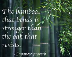 The bamboo that bends is stronger than the oak that resists. Japanese proverb