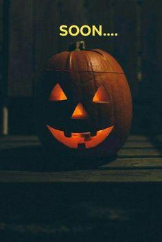 Halloween Countdown, Halloween Birthday, Birthday Fun, Scary Halloween, Vintage Halloween, Halloween Pumpkins, Fall Halloween, Halloween Crafts, Happy Halloween