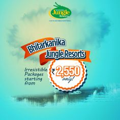 Attractive offers await you at Sand Pebbles Bhitarkanika Jungle Resorts! For attractive offers, check out the link belowhttp://www.bhitarkanikanationalpark.com/packages/#BhitarkanikaJungleResorts #AttractiveOffers #AffordablePrices
