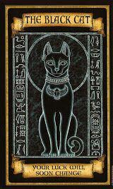 Madame Endora's Fortune cards - black cat