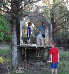 tree houses for kids | kids playing Queen and Vassals on a tree house enclosed with a PVC ...
