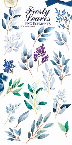 Frosty Leaves Clip Art These hand painted watercolor ponies clip art elements set is the perfect graphics to design any kind of kids party invitations, digital Watercolor Leaves, Floral Watercolor, Easy Watercolor, Watercolor Background, Watercolor Landscape, Watercolor Wedding, Simple Watercolor Flowers, Watercolour, Watercolor Pattern
