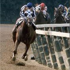 Super Horse--Secretariat! There will be NO other like him...
