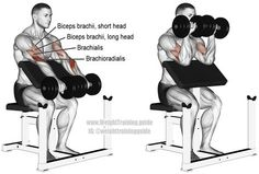 Dumbbell reverse preacher curl. An isolation exercise. Target muscle: Brachioradialis. Synergistic muscles: Biceps Brachii and Brachialis. Visit site to learn why the brachioradialis is the target and not the biceps brachii.