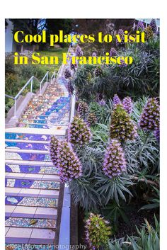 Cool and interesting backstreets of San Francisco and not the typical attractions to check out in the city.