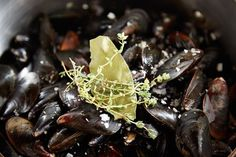 Mussels Dijonnaise (Steamed Mussels with Mustard Sauce) recipe on Food52