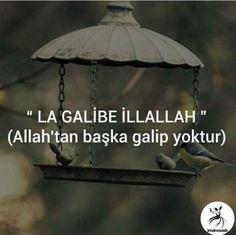 Allah Islam, Islam Quran, World Cities, Hafiz, Fashion, Desk, Quotes, Truths, Moda