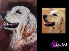 PET PORTRAIT. Commission pastel painting/pencil by RoanStudio, zł120.00