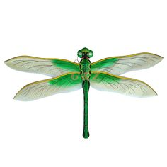 pictures of dragonflies | Dragonfly Kites: Silk, Nylon, Paper | Wholesale Chinese Kites