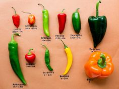 Inspired by the Food Network Star competition, the chefs in Food Network Kitchen break down the heat levels in some of the most-popular chile peppers. Fresno Peppers, Fresno Chili, Organic Recipes, Mexican Food Recipes, Healthy Recipes, Healthy Eats, Food Network Star, Food Network Recipes, Chile Picante
