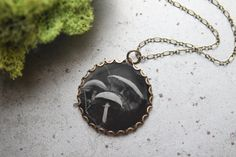 "RESERVED for Henrik.....Ambrotype, ""Mushroom Whimsy"", Clear Glass Photo Pendant, One of a Kind Original Wet Plate Collodion Necklace"