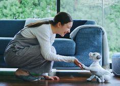 #Sony Robot Dog #Aïbo return to the market