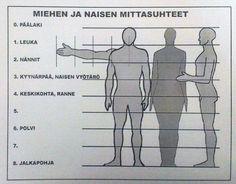 Ihmisen mittasuhteet (taustaa).