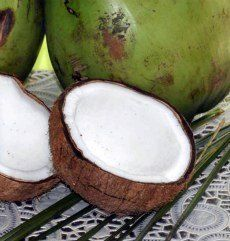 Home remedy ear infection? Antibiotics are usually prescribed for ear infections. But what if the cause is not bacterial? Bacterial or not, coconut oil can kill