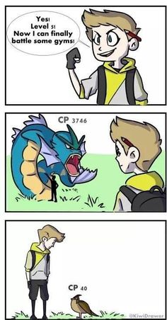 New pokemon gamers will understand... Still annoying tgey didnt think of levels more and battle mechanics