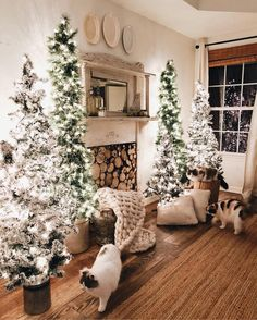 "3,101 Likes, 240 Comments - Erin | Cotton Stem (@cottonstem) on Instagram: ""I was playing around in here to style our bedroom for Christmas two nights ago, and the fluffy…"""