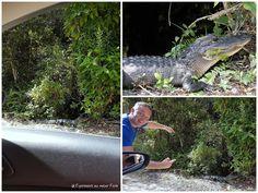 Florida - Everglades {EamK on Tour}