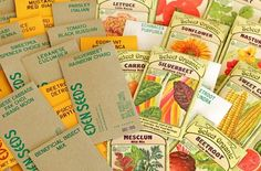 Eden Seeds - The best place to buy non-hybrid non-GMO open-pollinated and organic vegetable, herb, flower, and tree seeds.