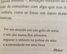 """""""Transparências da eternidade"""", Rubem Alves."""