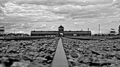Kamp Auschwitz - link naar video met beelden kort na de bevrijding
