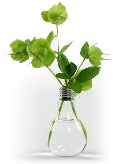 This vase is made of borosilicate glass and stainless steel socket to resemble a lightbulb