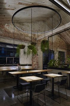 Veggie-powered restaurant Transformer Fitzroy amps up the greenery inside and out at former electronics factory...